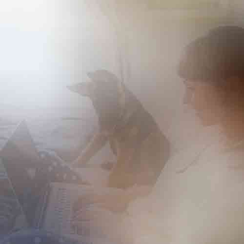 A woman with a dog on a bed creating a delivery listing online