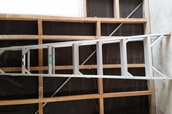 Domestic Ladder
